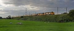 The  Three Peaks Challenge (garstangpost.t21) Tags: 37419 37402 1z86 fortwilliam crewe threepeakschallenge charter class37 diesellocomotives lancashire scorton