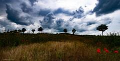 Regenwand (carsten.plagge) Tags: 2019 cp55 carstenplagge himmel red rot wolken