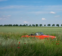 red and green (carsten.plagge) Tags: 2019 cp55 carstenplagge himmel mg mgb red roadster rot wolken offen