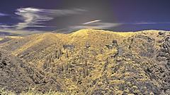 Cathar castles, Lastours (markbangert) Tags: lastours cathar castle france carcassonne infrared infrarot fuji xt1 700nm