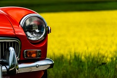 yellowred (carsten.plagge) Tags: 2019 cp55 carstenplagge farben mg mgb