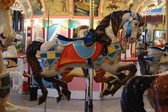 Holyoke Carousel, Holyoke Massachusetts (Bob Cornellier) Tags: carousel holyoke massachusetts horse horses philadelphia toboggan company red green light lights color composition fun happy merry go round