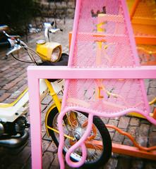 Pink (cbadams2) Tags: 2015 3165 bike color diana film omaha toycamera