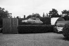 Citroën (Kamerakata) Tags: 4 400 analog bergger epson hc110 lenstagger limburg pancro400 perfectionv600 urlaub niederlande welta weltaflex