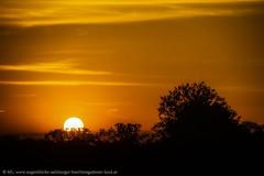 Sonnenuntergang (Augenblicke vom Salzburger u. Berchtesgadener Land) Tags: salzburg österreich natur landschaft sonnenuntergang abendrot