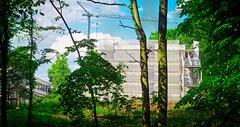 Natur & Neubau | 9. Juni 2019 | Schleswig-Holstein - Deutschland (torstenbehrens) Tags: natur neubau | 9 juni 2019 schleswigholstein deutschland olympus penf m45mm f18