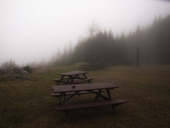 So peaceful... (Oli Clearwater Pics) Tags: fog mist table grass trees mysterious person olympus