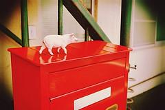 hurry up,Mr postman! (sugar-leg) Tags: pink wait boyfriend red postman letter love pig joy post