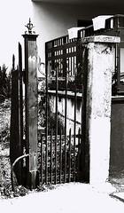 40 (Greyframe) Tags: greyframe black white fence yard