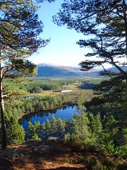 , 2018 Nov 01 (Dunnock_D) Tags: britain gb highland highlands scotland uk uath unitedkingdom blue clouds forest grass green lochan lochans sky trees water white woodland woods kingussie