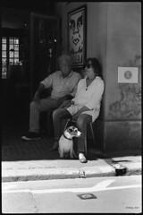 Keeping watch (MartPics1968) Tags: leicam42 summicron50mmf2 blackwhite honfleur france people dog 35mmfilmcamera 35mmfilm 35mm streetphotography kodaktrix400 ilfordid11developer
