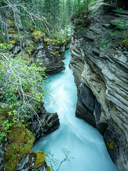 untitled (15 of 94).jpg (jester821) Tags: familyvacation canadianrockies longexposure canada jasper canyon banff athabascafalls