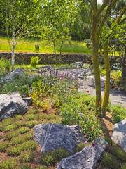 Park & Garden | 10. Juni 2019 | Stocksee - Schleswig-Holstein - Deutschland (torstenbehrens) Tags: park garden | 10 juni 2019 stocksee schleswigholstein deutschland olympus penf m17mm f18