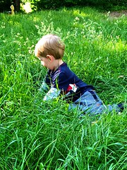 Love Summer (weilandsteven) Tags: liebe sonne leben gras sommer boy
