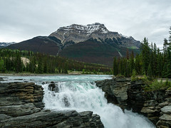 untitled (14 of 94).jpg (jester821) Tags: familyvacation canadianrockies mountains jasper banff athabascafalls waterfall
