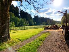 Dorfleben (weilandsteven) Tags: sonne sommer leben holz dorf wald felder