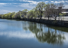 (jfre81) Tags: chicago river south branch reflection trees sky water blue bridgeport side city urban landscape james fremont photography jfre81 canon rebel xs eos