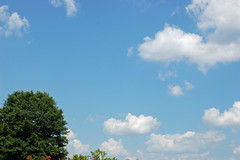 Blue Sky On Father's Day 2019. (dccradio) Tags: lumberton nc northcarolina robesoncounty outdoor outdoors outside cloud clouds sky whiteclouds cloudformation bluesky tree trees foliage greenery leaf leaves nikon d40 dslr june summer summertime sunday weekend afternoon sundayafternoon goodafternoon