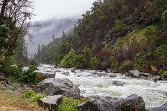 River valley (mpalmer934) Tags: yosemite national park california merced river forest rapids stream creek woods wilderness scenery landscape outdoors nature