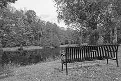 The Bench by the pond (J. Gillis Photography) Tags: photography blackandwhite blackandwhitephotography bwphotography water jacksonpark peterborough peterboroughontariocanada peterboroughontario outdoor outdoorphotography canon canada canonrebel canont6 canonrebelt6 ontario ontariocanada