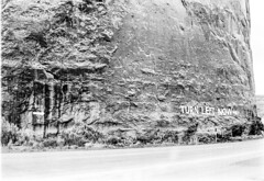 33_Utah_Turn_Left_Now_Sign (Lather and Froth) Tags: text