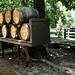 Whiskey Barrels, Belle Meade Plantation 6/15/19