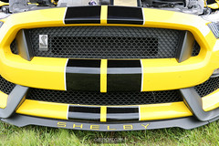 American Muscle Mustang Show 2019_141