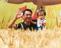 Watering the Wheatfields with Language (语润麦田) Open Day  (29) (ArdieBeaPhotography) Tags: family child boy girl kids children trainingcentre openday young small cute pretty handsome fun play together games celebration event promotion tvpresentationtraining actingschool kindergarten toddler father daughter glasses wheat wheatfield farm foreground backdrop grain grassseed seedhead two fox tamronspaf2875mmf28xrdildasphericalif