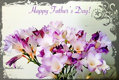 For Father's everywhere! (Marcia Portess-Thanks for a million+ views.) Tags: blossoms bouquet photomanipulation elarte art card father'sday flowers marciaaportess marciaportess map forfatherseverywhere