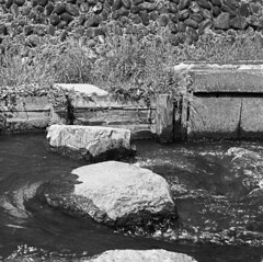 Stepping stones (odeleapple) Tags: zenza bronica s2 nikkorp 75mm neopan100acros film monochrome analog bw stepping stone stream