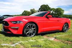 American Muscle Mustang Show 2019_133
