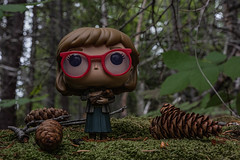 Twin Peaks: My Log Has Something to Tell You (The Flying Inn) Tags: davidlynch doll figure funkopop loglady sciencefiction toy twinpeaks vinyl drama forest horror mystery pinecones plastic scifi soapopera television woods