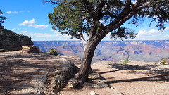 P6137287 (aimlesswander) Tags: grand canyon travel