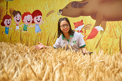 Watering the Wheatfields with Language (语润麦田) Open Day  (13) (ArdieBeaPhotography) Tags: family child boy girl kids children trainingcentre openday young small cute pretty handsome fun play together games celebration event promotion tvpresentationtraining actingschool wheat wheatfield farm backdrop foreground fox ox teachers friends seedhead grain grassseed glasses tamronspaf2875mmf28xrdildasphericalif