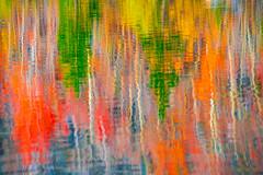 North Lake Autumn Aspen Reflections! Eastern Sierra Fall Foliage California Fall Color! North Lake Bishop Creek Clouds! High Sierra Autumn Aspens Red Orange Yellow Green Leaves! Sony A7R II & Sony FE 24-240mm f/3.5-6.3 OSS Lens SEL24240! Elliot McGucken (45SURF Hero's Odyssey Mythology Landscapes & Godde) Tags: eastern sierra fall foliage california color north lake bishop creek clouds high autumn aspens red orange yellow green leaves sony a7r ii fe 24240mm f3563 oss lens sel24240 elliot mcgucken fine art landscape nature