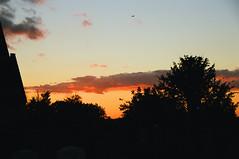 Greenwich Cemetery Sunset (Matthew Huntbach) Tags: greenwichcemetery sunset kodakportra800