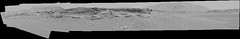 Mountains Hiding Behind Local Terrain, Bayer Encoded (sjrankin) Tags: 17june2019 edited panorama nasa mars msl curiosity galecrater mountains sky haze dust rocks grayscale bayerencoded