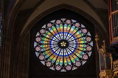 DSC_7846.jpg (Elizabeth Mulshine) Tags: france strasbourg church stainedglass