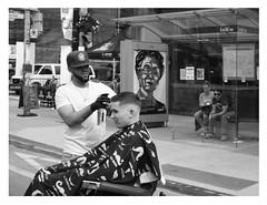 haircut al fresco (mcfcrandall) Tags: haircut barber blackandwhite outside outdoors street festival littleitaly busshelter watching collegestreet men
