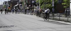 DSC_2016 (view836) Tags: preston prestonstreet prestonstreetcriterium 2019 ottawa cycling bike race bikerace bikeraceottawa novice novicemen criterium ontario canada