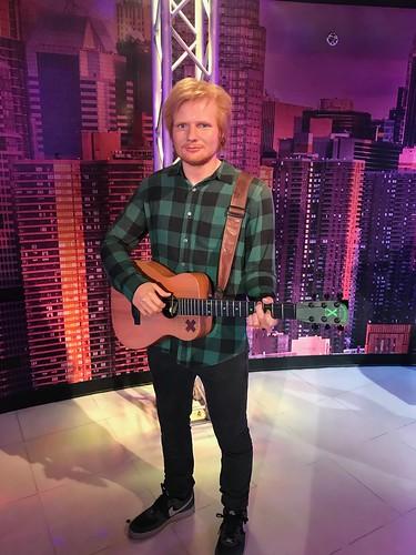Ed Sheeran fan photo