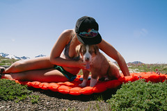 Dug (gmolteni) Tags: pnw snow mountain mountains dog puppy shepard portrait camping hiking national park washington olympics olympic