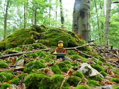Mossy Patch (captain_joe) Tags: toy spielzeug 365toyproject lego minifigure minifig moos moss wald wood