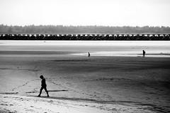 (sparth) Tags: olympusdigitalcamera olympus beach plage 2017 wa washington washingtonstate walkingsilhouette 1240 blackwhite blackandwhite bw nb noirblanc noiretblanc