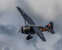 Westland Lysander (Linton Snapper) Tags: westland lysander oldwarden shuttleworth shuttleworthcollection canon airshow aviation aircraft lintonsnapper