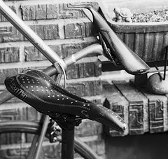 Texturas, enfoques y desenfoques. (fcuencadiaz) Tags: analogica fotografiaargentica film fotografiaquimica objetivosfijos objetivosmanuales plustek pelicula reveladomanual reveladoquimico linhof formatomedio 6x9 camarastecnicas delta100 rodinal