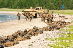 Amphibious beach landing at Kallaste Beach, Estonia, BALTOPS 2019 (CNE CNA C6F) Tags: infanteríademarina armadaespañola spanishnavy valientesportierraypormar spanishmarines terciodearmada sanfernando wearenato readyforces 47yearsstrong balticoperations baltops baltops2019 lcc20 mountwhitney nato navy sailors useucom usn usnavyeurope ussmountwhitney c2f snmg1 commanderunitedkingdommaritimeforces navalforceseuropeafrica germany navalbasekieltirpitzhafen ussfortmchenry lsd43 22ndmarineexpeditionaryunit estonia ussfortmchenrylsd43 polishnavy estoniannavy kallastebeach