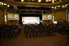 AFR-Summit2019-1288