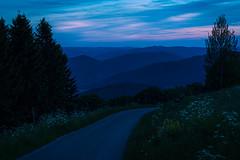 Towards the blue mountains (Pascal Riemann) Tags: abendstimmung deutschland wildewiese landschaft blauestunde weg sauerland availablelight natur bank bluehour germany landscape nature outdoor eveningmood path