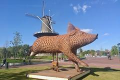 Pig (Michiel2005) Tags: pig varken beeld lammermarkt leiden netherlands holland nederland